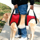 Nylon Pet Dog Lift Front Rear Harness Soft Support Injured Elderly Help Disabled