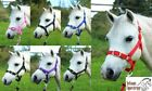 Headcollar & Lead Rope Set Strong Head Collar - Shetland Pony Cob Full Free P&P