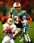 Miami Dolphins Dan Marino Quarter Back QB NFL Football Art Print 03 8x10 - 48x36 $12.99 USD on eBay