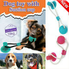 Pet Molar Bite Multifunction Floor Suction Cup Dog Toy Ball Interactive Puppy