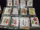 Various Designs Unmounted Rubber Stamps U-PICK By Crafters Companion
