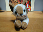 Ty Beanie Babies Bear Animals Various Styles Retired U Pick Your Choice w tags