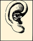 1819 Ear with eye drawing quality POSTER. Sarcastic  Wall Decorative Art.