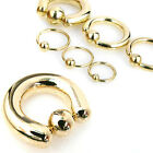 Gold Plated over 316L Surgical Steel Captive Bead ring