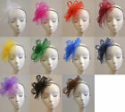 Floral/Flower Feathers  Fascinator Headband Wedding/Horse Race Hair Accessories