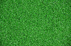 Premium Outdoor Infield Green Grass Turf Carpet Rug/Runner/Golf/Sports/Dog Mat
