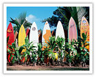 Old Surfboards Never Die Maui Hawaii Aloha Wave Vintage Art Poster Print Giclee