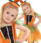 Toddler Pumpkin Fairy Cute Fancy Dress Costume (1-2 & 3-4 Years)