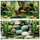 """Aquarium Fish Tank poster 20""""H Background Double sided picture rock stone 2."""