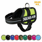 Julius-K9 Powergeschirr Baby 2-