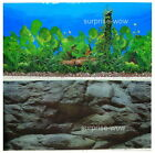 "Fish Tank Aquarium 16"" H(40cm) Background 2 sided picture IMAGE Rock water tree1"