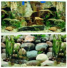 "Fish Tank Aquarium 20"" H(50cm) Background 2 sided picture IMAGE Stone rock 3"