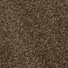 NEW! Quality Luxurious - Brown 9.5mm Saxony Pile - Hessian Backed Carpet