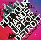 "FEDDE LE GRAND - PUT YOUR HANDS UP FOR DETROIT 12"" VINYL IBIZA HOUSE CLASSIC DJ"
