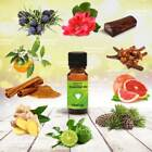 ESSENTIAL OIL - 50ml - 100% Pure - for Aromatherapy & Home Fragrance