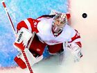 Jimmy Howard Detroit Red Wings Ice hockey Sport Wall Print POSTER $17.95 USD on eBay