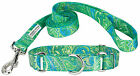 Country Brook Design® Martingale Collar & Leash - Paisley Collection