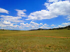 RARE 5 ACRE COLORADO RANCH! 2WD ACCESS~INCREDIBLE SETTING-CASH SALE! NO RESERVE!