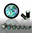 Abalone Inlay Organic Water Buffalo Horn Saddle Plug - Sold p/pce 19 22 25mm *