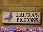 MADE TO ORDER PIGEON SIGN OWN NAME SIGN HOUSE PLAQUE PIGEON GIFTS GARDEN SIGNS