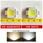 5X10W LED SMD Chip Bulbs Beads  Power for Floodlight Lamp White/Warm Lighting
