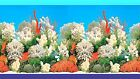 AQUARIUM BACKGROUND - WHITE CORAL - 30cm 50cm or 60cm(H) - BUY by Lineal METRE