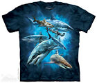 Shark Collage T-Shirt from The Mountain - Child S - XL