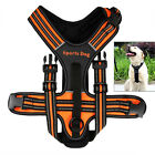 Medium/Large Dog Pet Soft Padded Adjustable No Pull Harness With Handle Safety