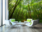 3D Dense Forest 1164 WallPaper Murals Wall Print Decal Wall Deco AJ WALLPAPER