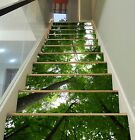 3D Tall Trees 001 Stairs Risers Decoration Photo Mural Vinyl Decal Wallpaper US