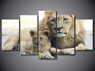 Framed Picture Canvas Prints Cub & Mom African Lion Panthera Leo Big Cat Animal