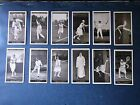 Churchmans Lawn Tennis ( Complete Your Set ) Very Good 1928