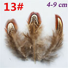 Wholesale 10-200 PCS FULL SIZE NEW  Pheasant Tail & PEACOCK FEATHERS DIY