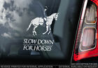 Slow Down for Horses - Car Window Sticker - Equestrian Horse Decal Sign - V01