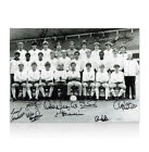 Tottenham Hotspur Team Of 1984 Photo Signed By 12 Autograph