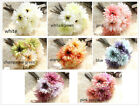 25cm Artificial Daisy Gerbera Rose Silk Flowers Flower Floral Fake Wedding