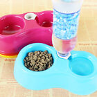 Pet Dog Puppy Cat Kitten Automatic Water Dispenser Food Dish Bowl Feeder set Pro