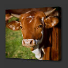 BROWN FARM COW ANIMAL PAINTING STYLE BOX CANVAS PRINT WALL ART PICTURE PHOTO