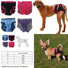 Diapers For Dogs Physiological Shorts Pants Puppy Various NEW Pet Underwear