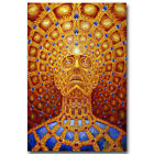 ALEX GREY Trippy Psychedelic Abstract Art Silk Poster 12x18 32x48 inch