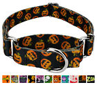 Country Brook Petz™ Martingale Dog Collar - Halloween Collection