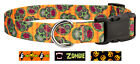 Country Brook Design® Deluxe Dog Collar - Halloween Collection