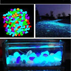 Stones Glow in The Dark Fluorescent Pebble Rock For Fish Tank Aquarium 90pcs