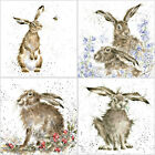 Birthday Card - Hare & Rabbit Collection by Hannah Dale -Blank Inside -8 Designs