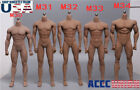 Kyпить PHICEN 1/6 Steel Skeleton Male Muscular Seamless Body M30 M31 M32 M33 M34 M35 на еВаy.соm