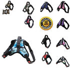 Adjustable Small Medium Large XL Vest Harness Leash Collar Set For Dogs Pets