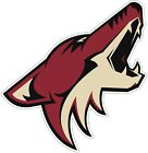 Arizona Coyotes NHL Color Die Cut Vinyl Decal Sticker - New Choose Size cornhole $4.95 USD on eBay