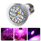 E27 Full Spectrum LED Plant Grow Light Greenhouse Hydroponics Growing Lamp Bulb