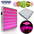 120W LED Plant Grow Light Lamps 1131Red+234Blue AC85~265V For Flowering Plants