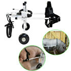 5 Types Pet/Dog Wheelchair for Handicapped Medium Dog Pets Run Again From USA